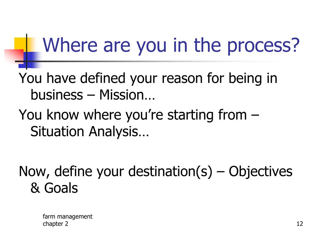 Where are you in the process?