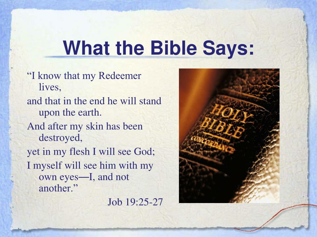 What the Bible Says: