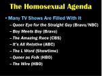 the homosexual agenda18