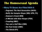 the homosexual agenda19