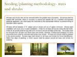 seeding planting methodology trees and shrubs