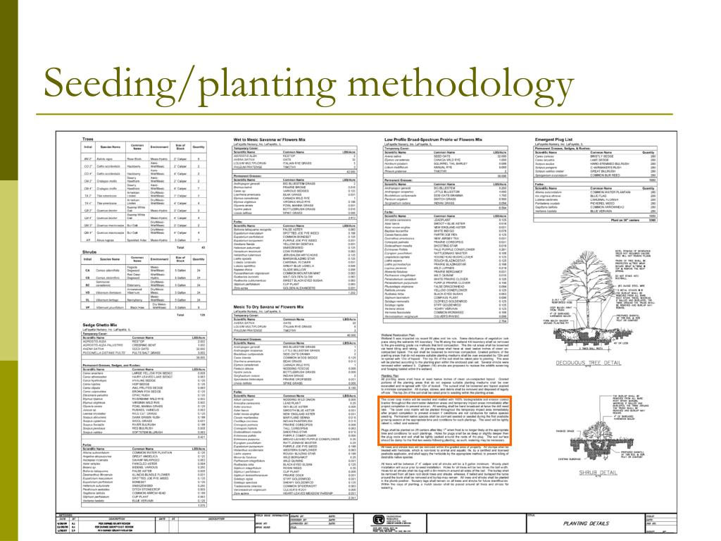 Seeding/planting methodology