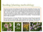 seeding planting methodology18
