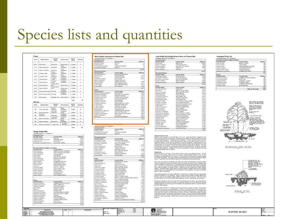 Species lists and quantities