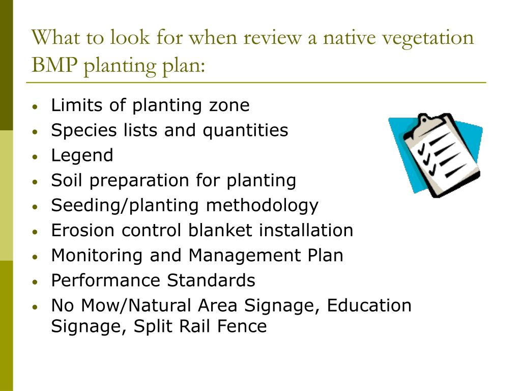 What to look for when review a native vegetation BMP planting plan: