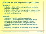 objectives and main steps of the project icosaw