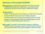 summary of the project icosaw