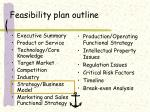 feasibility plan outline