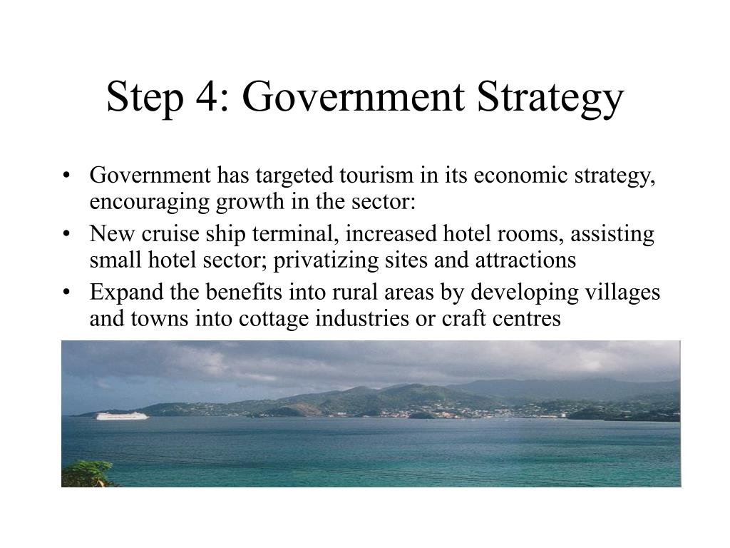 Step 4: Government Strategy