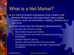 what is a net market