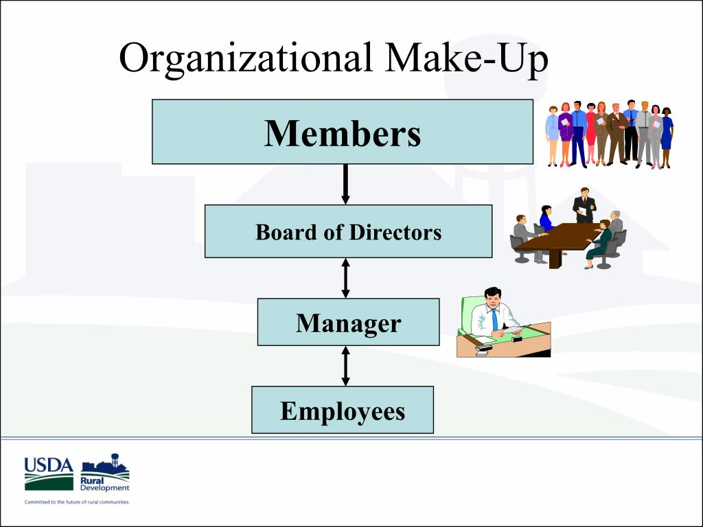 Organizational Make-Up