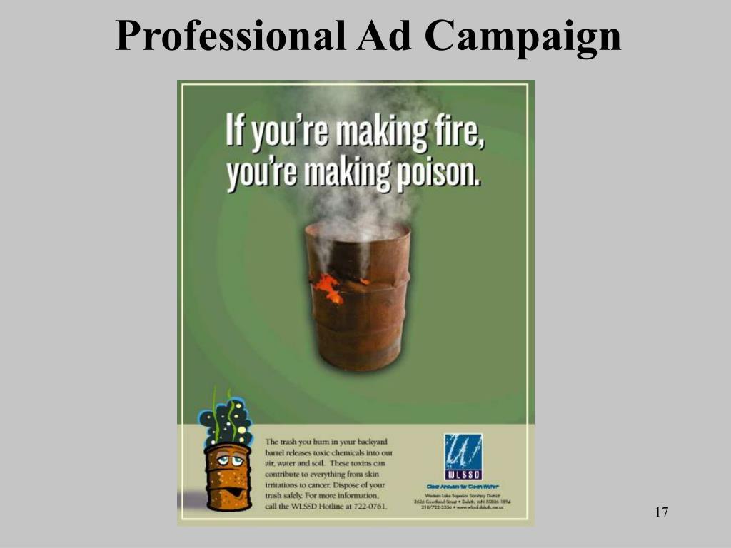 Professional Ad Campaign