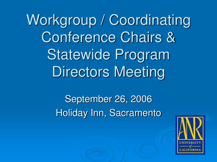 workgroup coordinating conference chairs statewide program directors meeting n.
