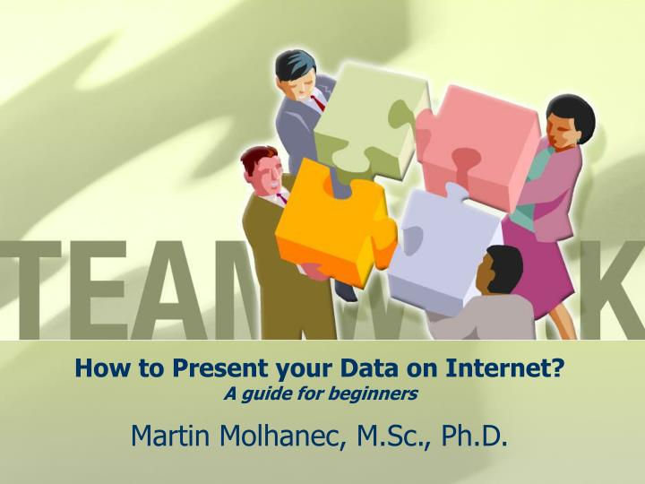 How to present your data on internet a guide for beginners