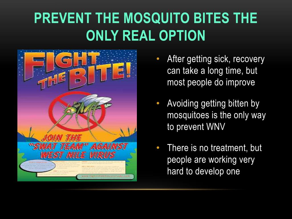 Prevent the mosquito bites the only real option