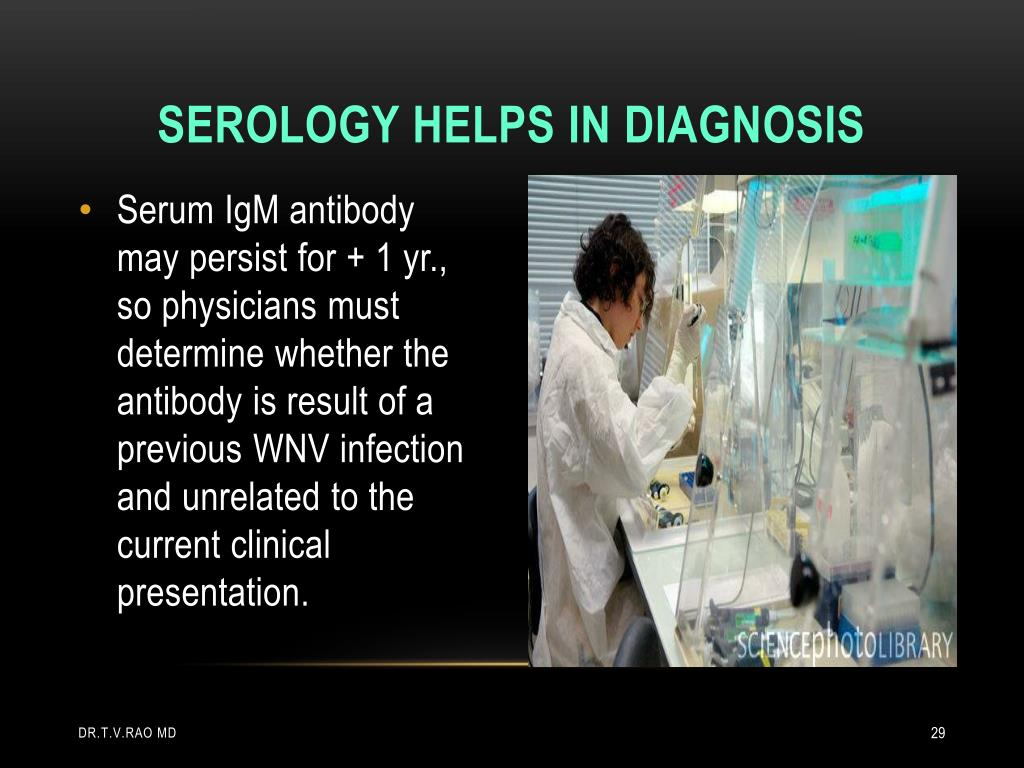 Serology helps in diagnosis