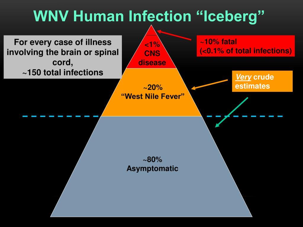 """WNV Human Infection """"Iceberg"""""""