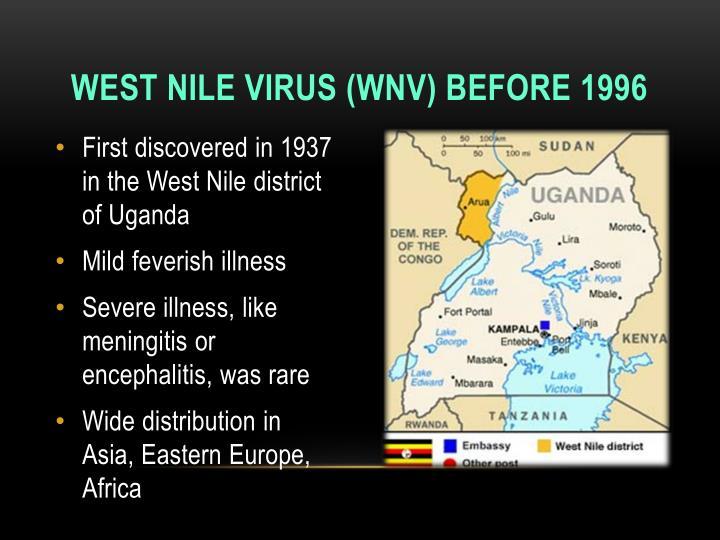 West nile virus wnv before 1996