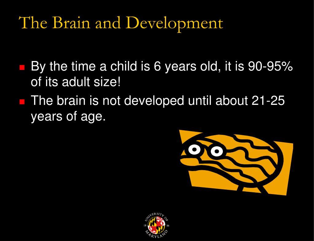 The Brain and Development