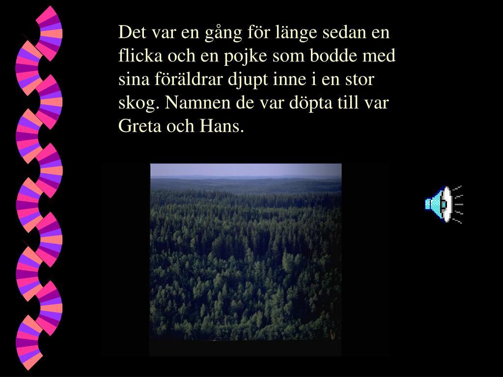 Det var en gång för länge sedan en flicka och en pojke som bodde med sina föräldrar djupt inne i en stor skog. Namnen de var döpta till var Greta och Hans.