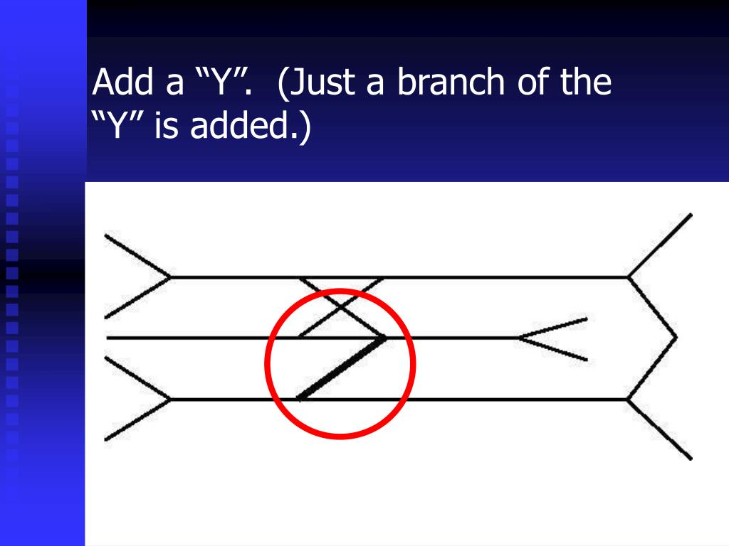 """Add a """"Y"""".  (Just a branch of the """"Y"""" is added.)"""