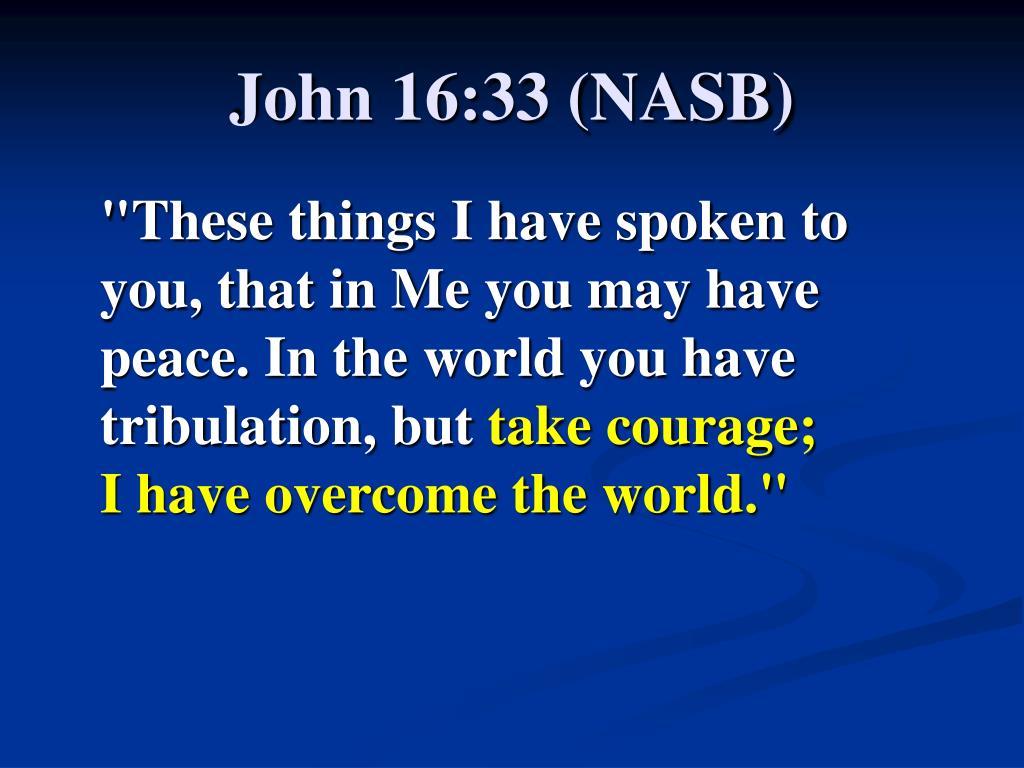 John 16:33 (NASB)