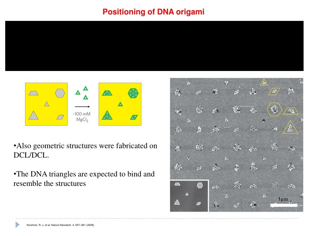 http://www.dnai.org/teacherguide/pdf/origami_inst.pdf | 768x1024