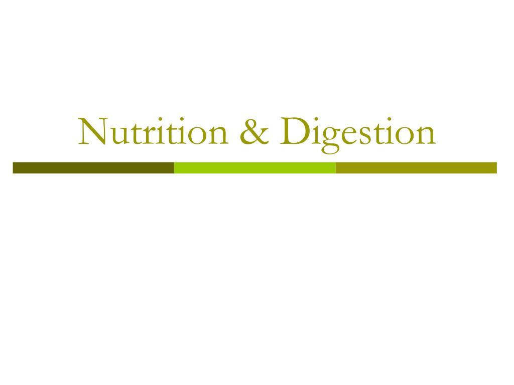 nutrition digestion l.