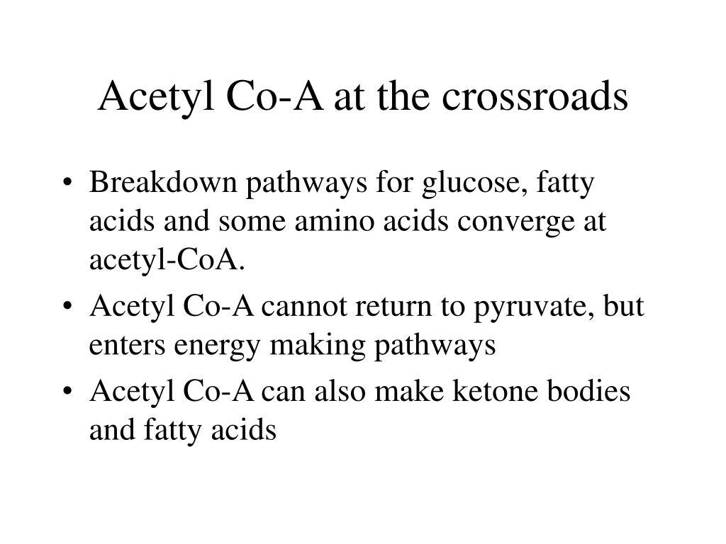 Acetyl Co-A at the crossroads