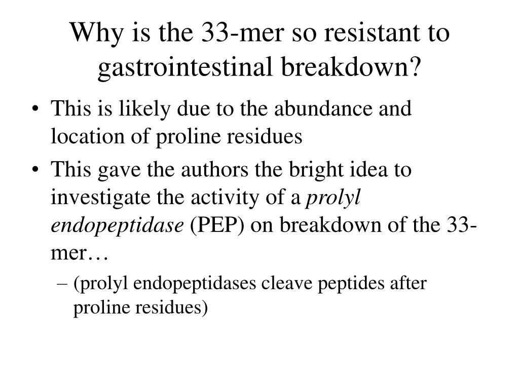 Why is the 33-mer so resistant to gastrointestinal breakdown?
