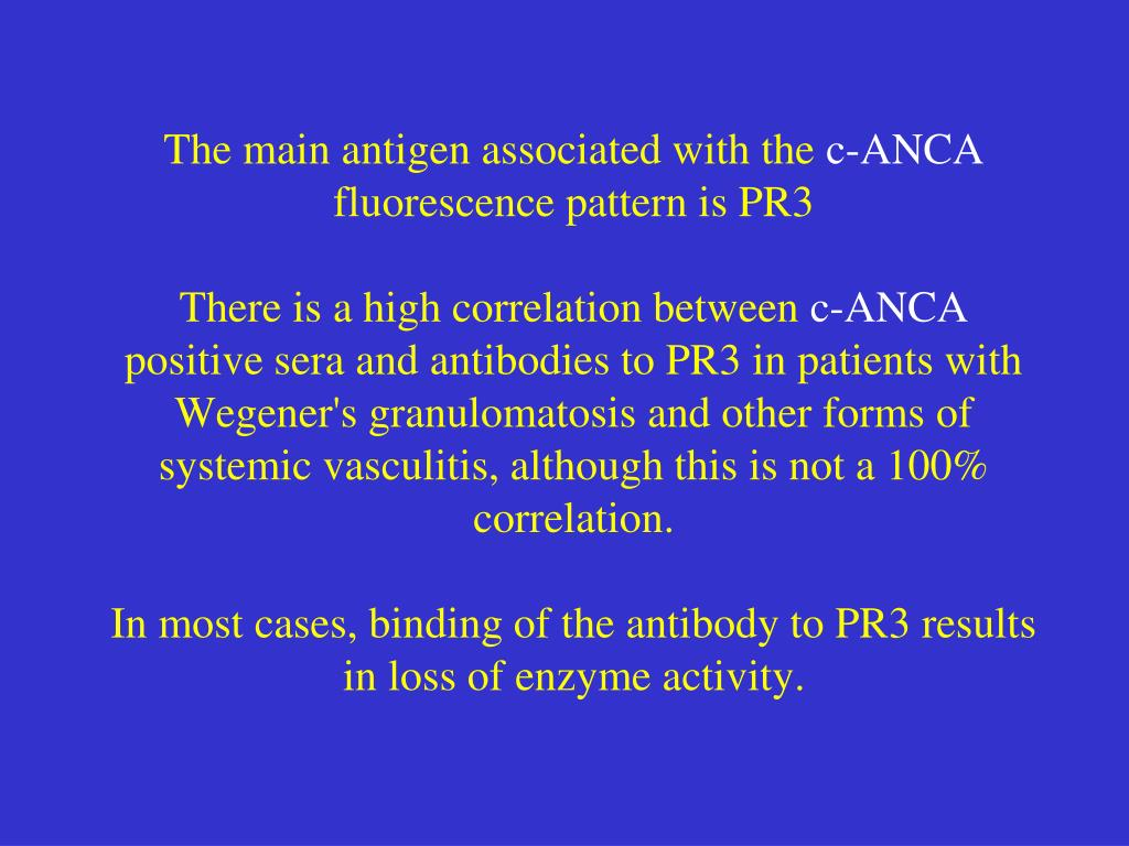 The main antigen associated with the