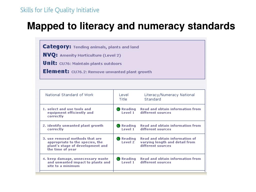 Mapped to literacy and numeracy standards