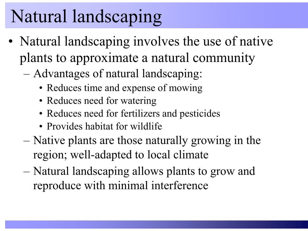 natural landscaping l.