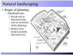 natural landscaping5