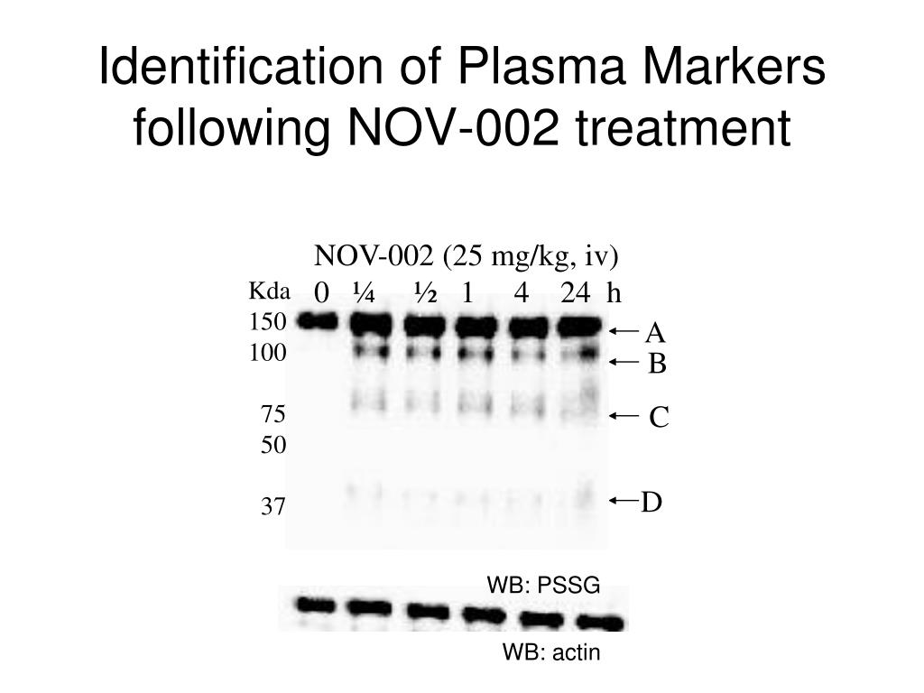 NOV-002 (25 mg/kg, iv)