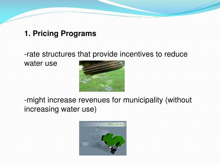 1. Pricing Programs
