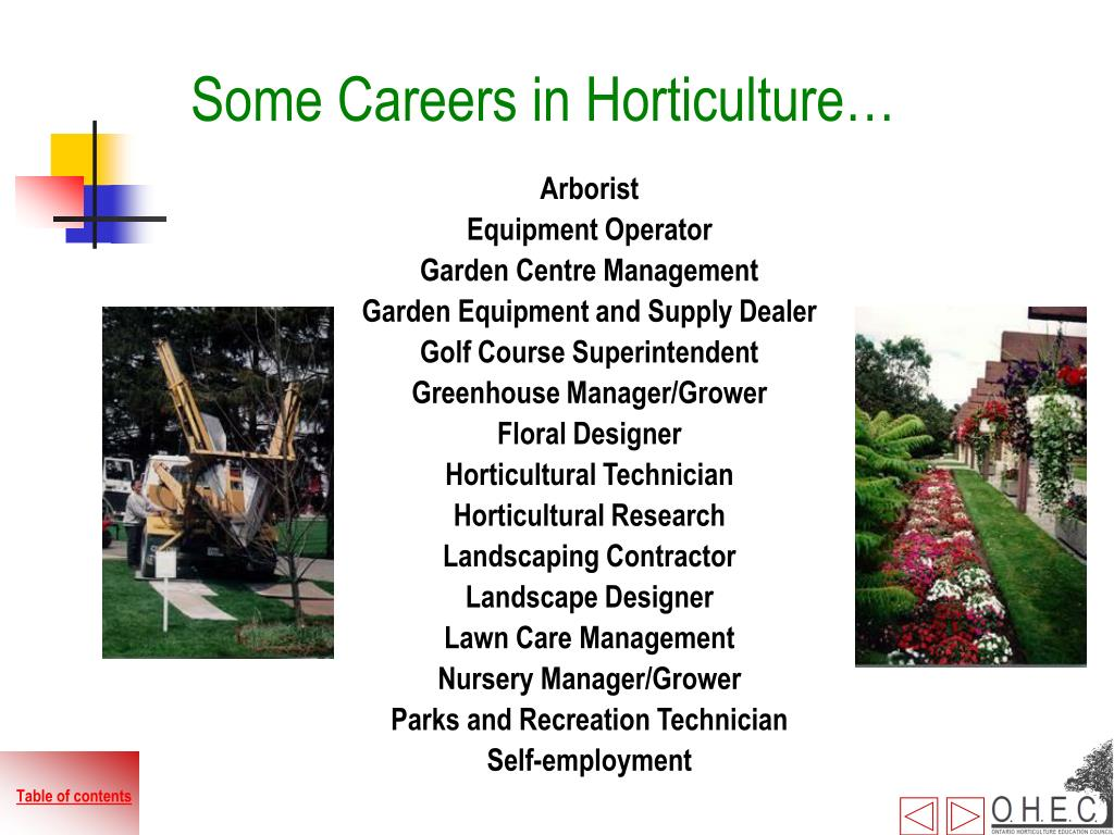 Some Careers in Horticulture…