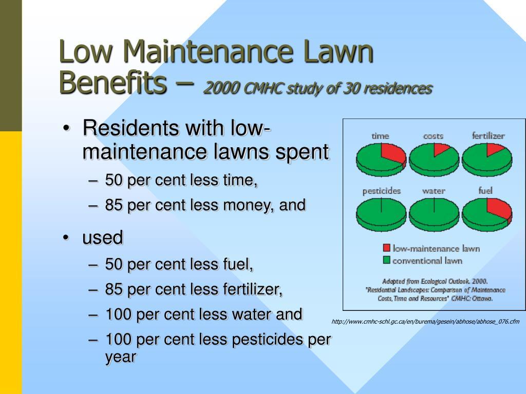 Low Maintenance Lawn Benefits –