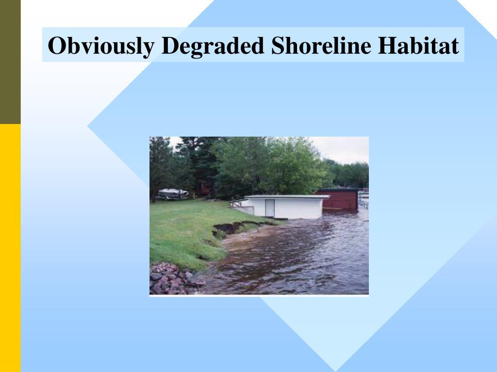 Obviously Degraded Shoreline Habitat