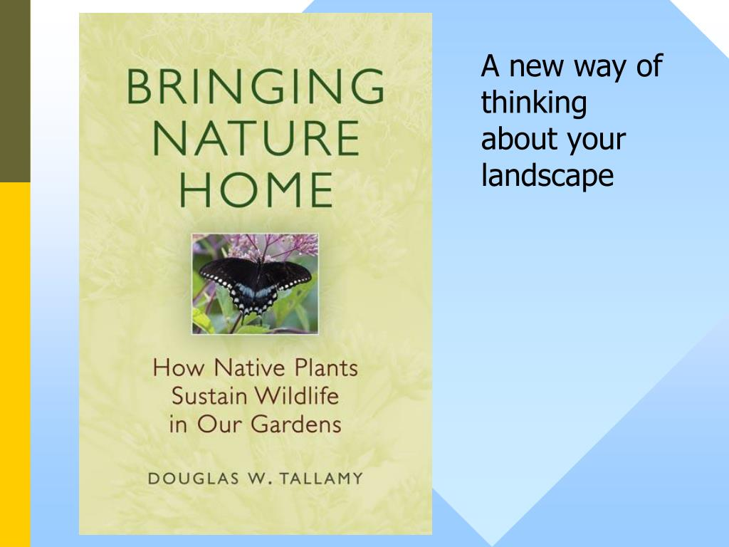 A new way of thinking about your landscape