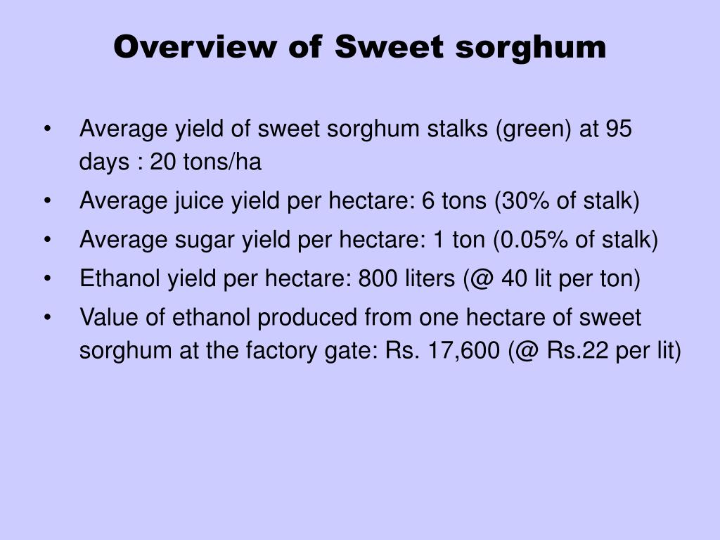 Overview of Sweet sorghum