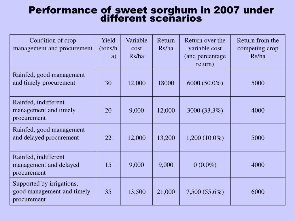 Performance of sweet sorghum in 2007 under different scenarios