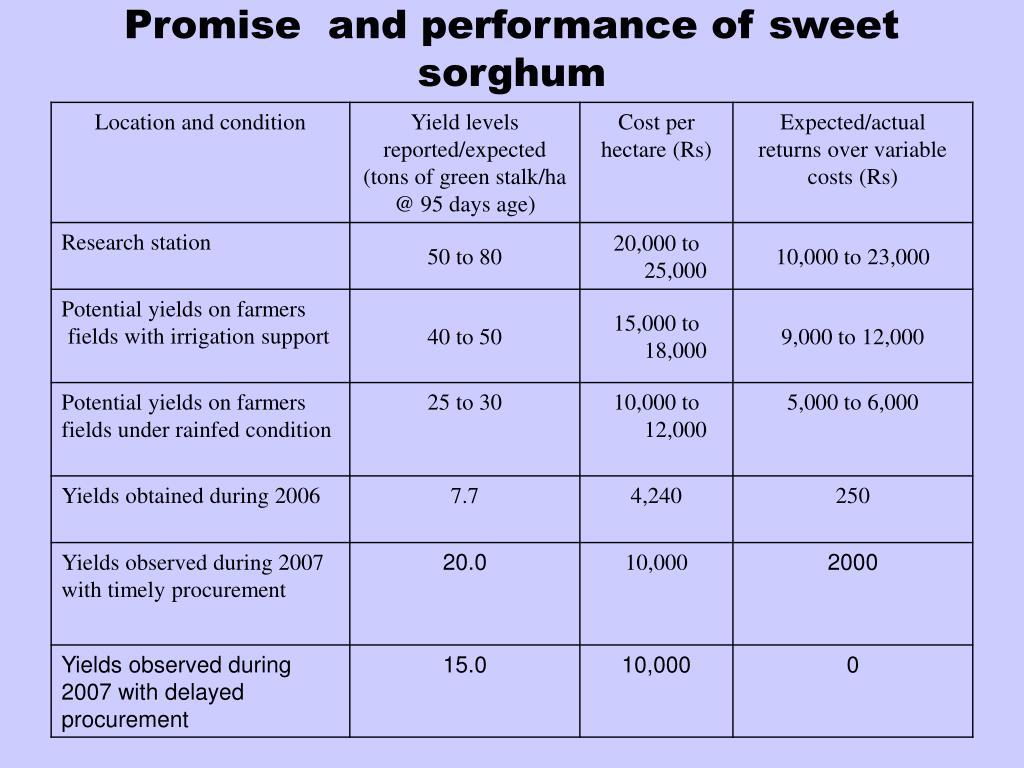 Promise  and performance of sweet sorghum