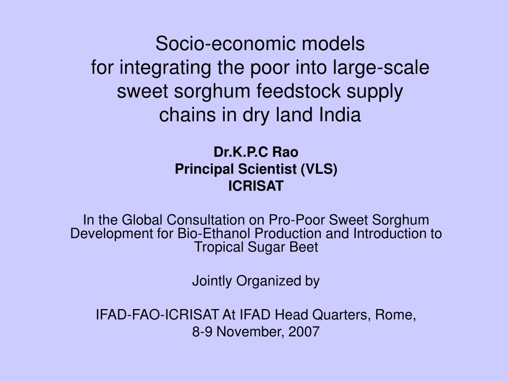 Socio-economic models