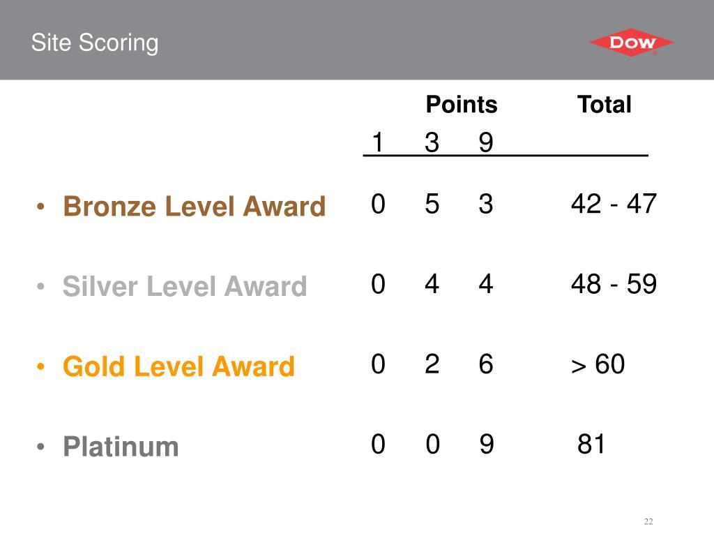 Bronze Level Award