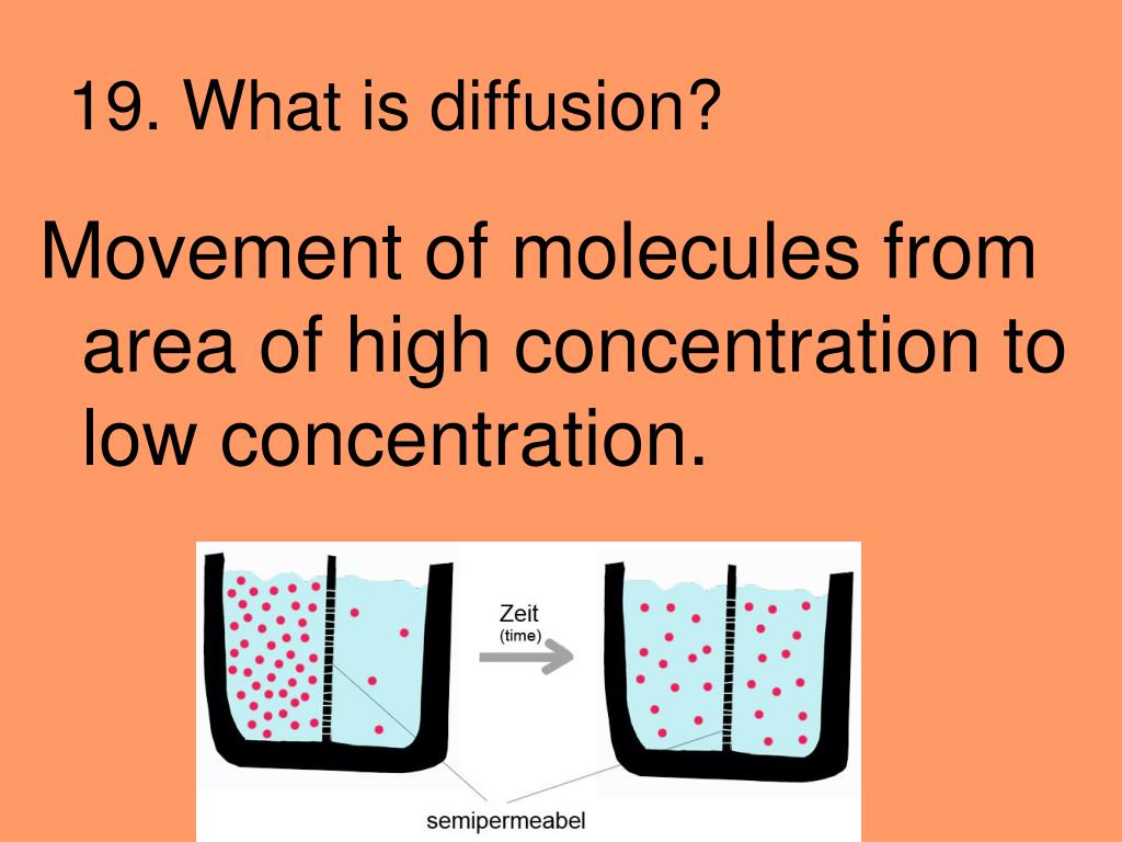 19. What is diffusion?