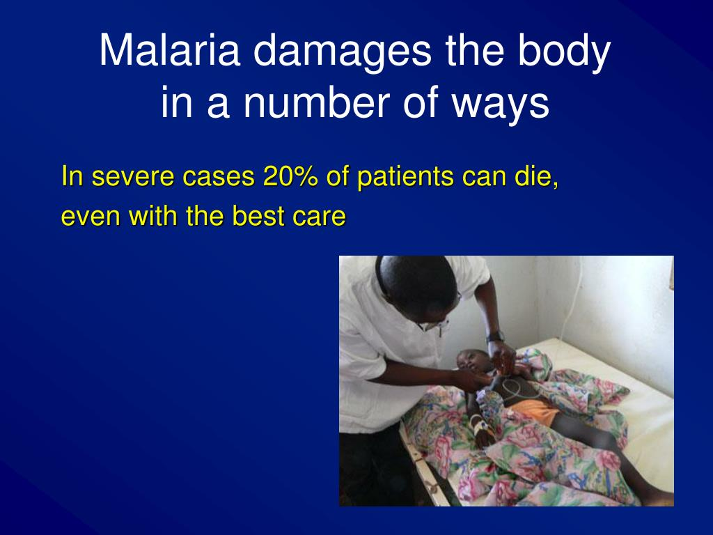 Malaria damages the body
