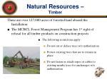 natural resources timber
