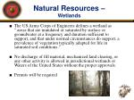 natural resources wetlands