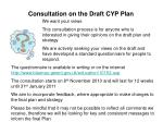 consultation on the draft cyp plan